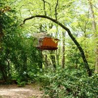 Cabane dans les arbres Jonquille à 6 mètres