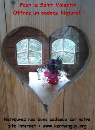 Bon saint valentin