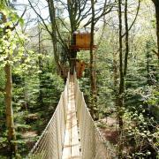 Tree house Nid-Clos
