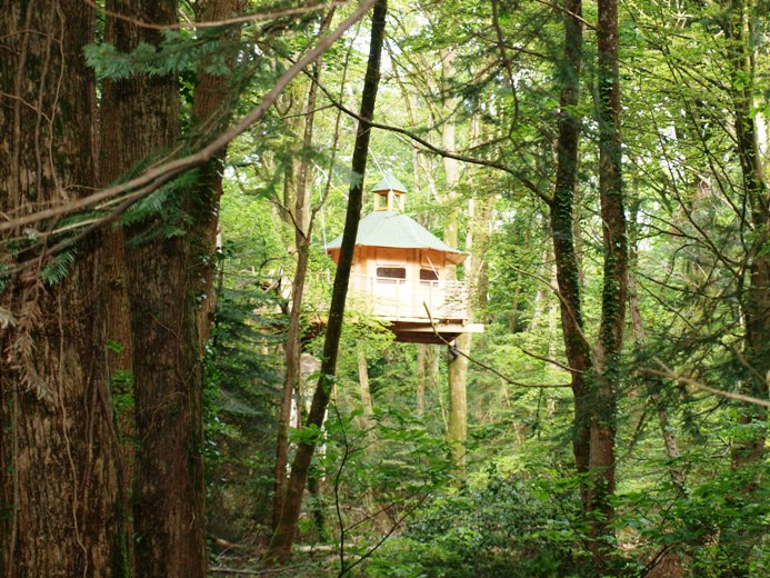 La cabane dans son environnement